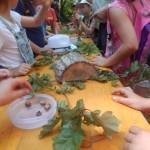 Ganz schön knifflig: Zuordnung von Frucht, Blatt und Rinde eines Baumes